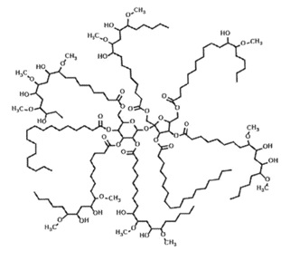 Composites from Flax Fibers and Glass Fibers in a Bio-Based